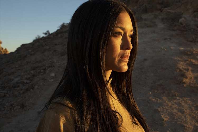 67b46991 c8a7 4f74 8e5f b30b7cb55f72 - نقد سریال Westworld قسمت هشتم از فصل دوم