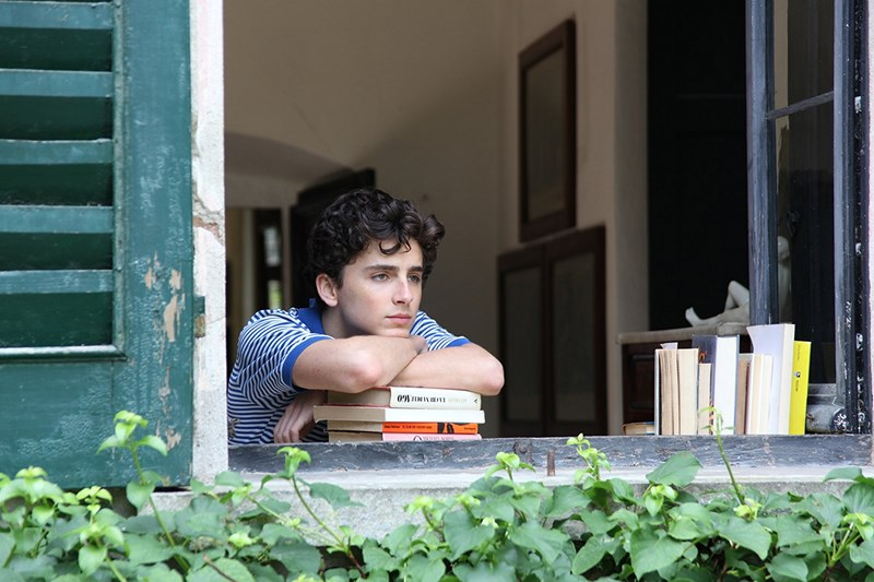 Call Me by Your Name 2017 2 - نقد فیلم Call Me By Your Name (مرا با نام خودت صدا بزن)