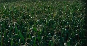 Interstellar36 - نقد فیلم Interstellar (در میان ستارگان) به کارگردانی کریستوفر نولان