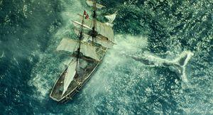 IntheHeartoftheSea7 - نقد فیلم In the Heart of the Sea (در دل دريا)