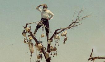 10 340x200 - نقد فیلم پیرمرد و باغ سنگی اش اثر پرویز کیمیاوی