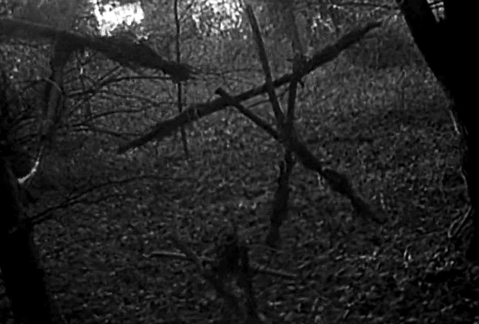 best horror movies ever 25 - بهترین فیلم های ترسناک تاریخ سینما