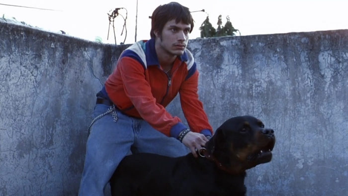 Amores Perros 1 - نقد فیلم Amores Perros (عشق سگی)
